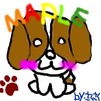 maple3